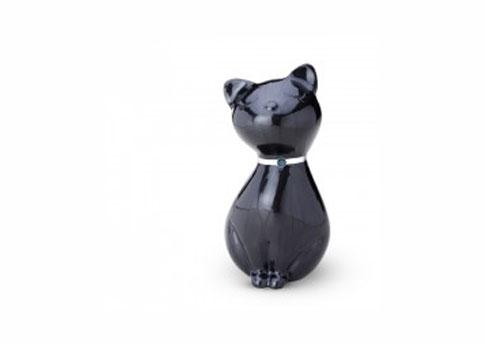 Princess Cat - Midnight Image