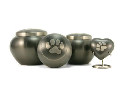 Slate/Pewter Single Paw Print Image