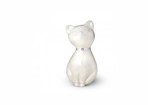 Princess Cat - White Image